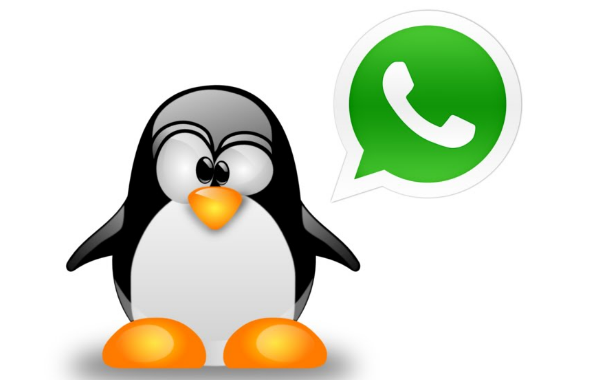 WhatsApp for Linux Download | Install Ubuntu WhatsApp App on Linux Mint, Debian